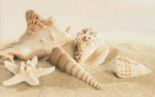 Amalfi sand decor 01 250х400